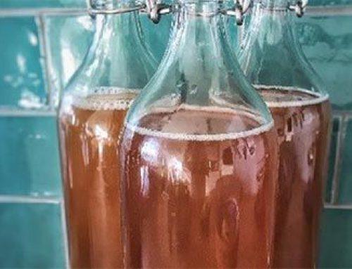 Kombucha, Should you be drinking it?